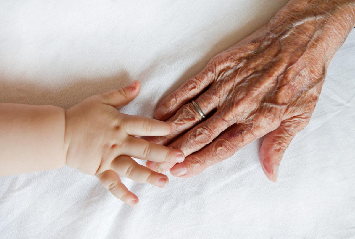 Cohabitation intergénérationnelle : des crèches implantées dans des maisons de retraite